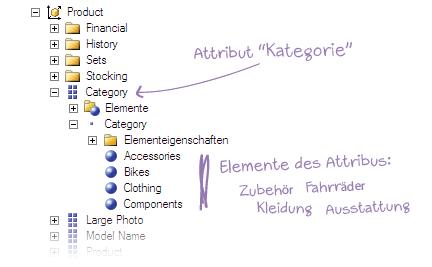 Elemente des Attributs Kategorie auf Deutsch: Fahrräder, Kleidung, Ausstattung und Zubehör